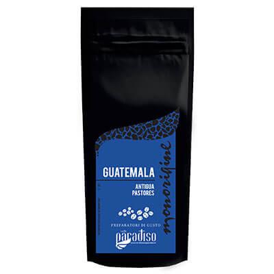 MONORIGINE GUATEMALA